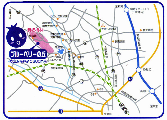 blueberrymap